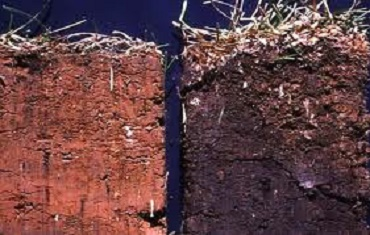 Depleted soil